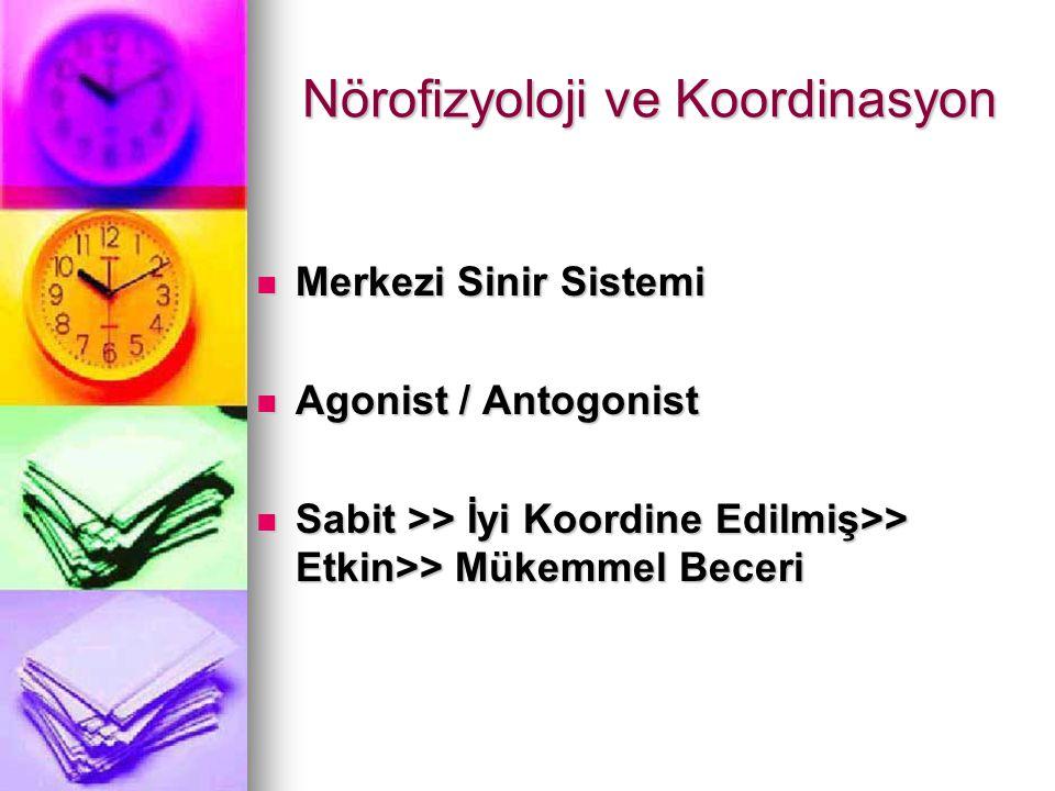 Nörofizyoloji ve Koordinasyon Merkezi Sinir Sistemi Merkezi Sinir Sistemi Agonist / Antogonist Agonist / Antogonist Sabit >> İyi Koordine Edilmiş>> Et