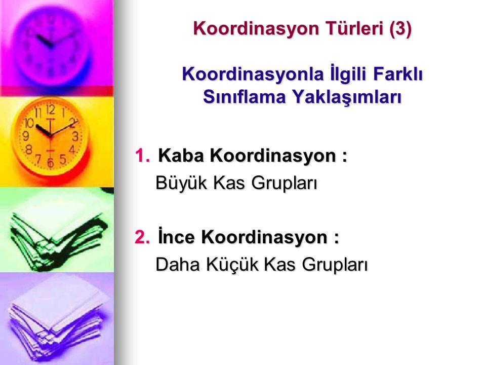 Koordinasyon Türleri (3) Koordinasyonla İlgili Farklı Sınıflama Yaklaşımları 1.Kaba Koordinasyon : Büyük Kas Grupları Büyük Kas Grupları 2.İnce Koordi