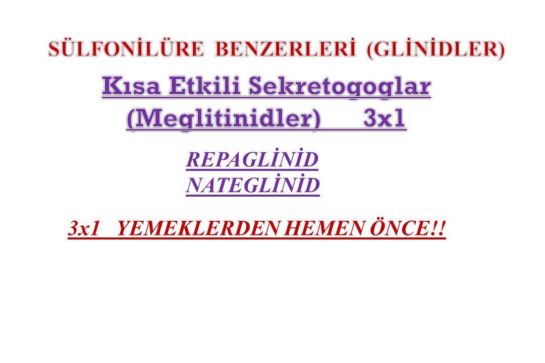REPAGLİNİD NATEGLİNİD 3x1 YEMEKLERDEN HEMEN ÖNCE!!