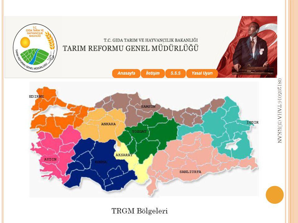 TRGM Bölgeleri 081205016 TAHA GÜRKAN
