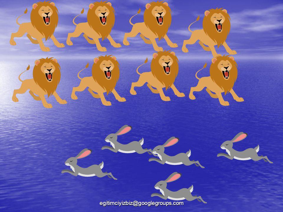 Aslanların sayısı, tavşanların sayısından çok olduğu için 8 büyüktür 5'ten ifadesini kullanırım.