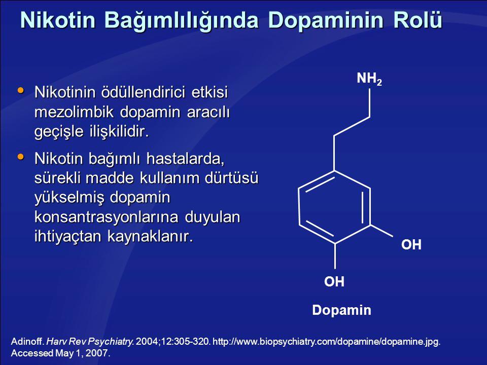 Nikotin Bağımlılığında Dopaminin Rolü  Nikotinin ödüllendirici etkisi mezolimbik dopamin aracılı geçişle ilişkilidir.  Nikotin bağımlı hastalarda, s