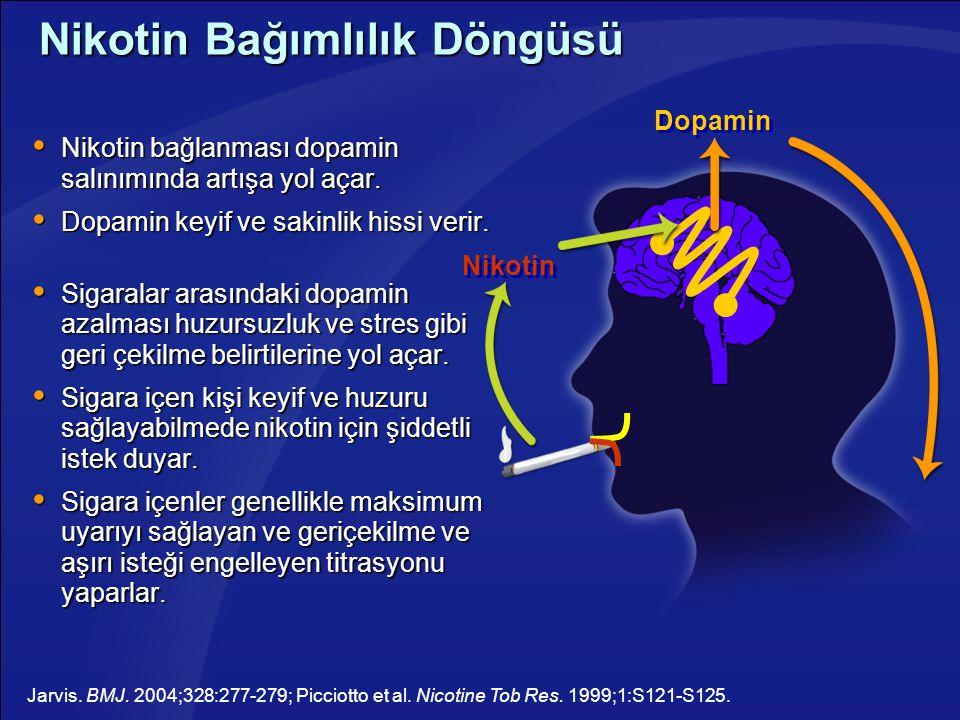 Nikotin Bağımlılık Döngüsü  Nikotin bağlanması dopamin salınımında artışa yol açar.  Dopamin keyif ve sakinlik hissi verir.  Sigaralar arasındaki d
