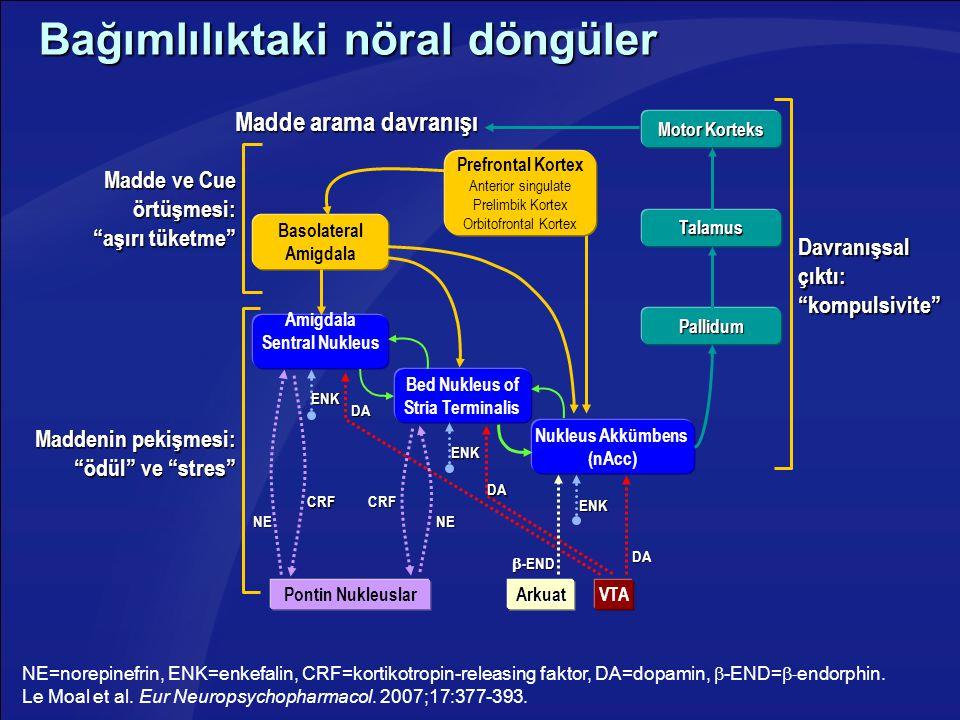 Bağımlılıktaki nöral döngüler NE=norepinefrin, ENK=enkefalin, CRF=kortikotropin-releasing faktor, DA=dopamin,  -END=  - endorphin. Le Moal et al. Eu