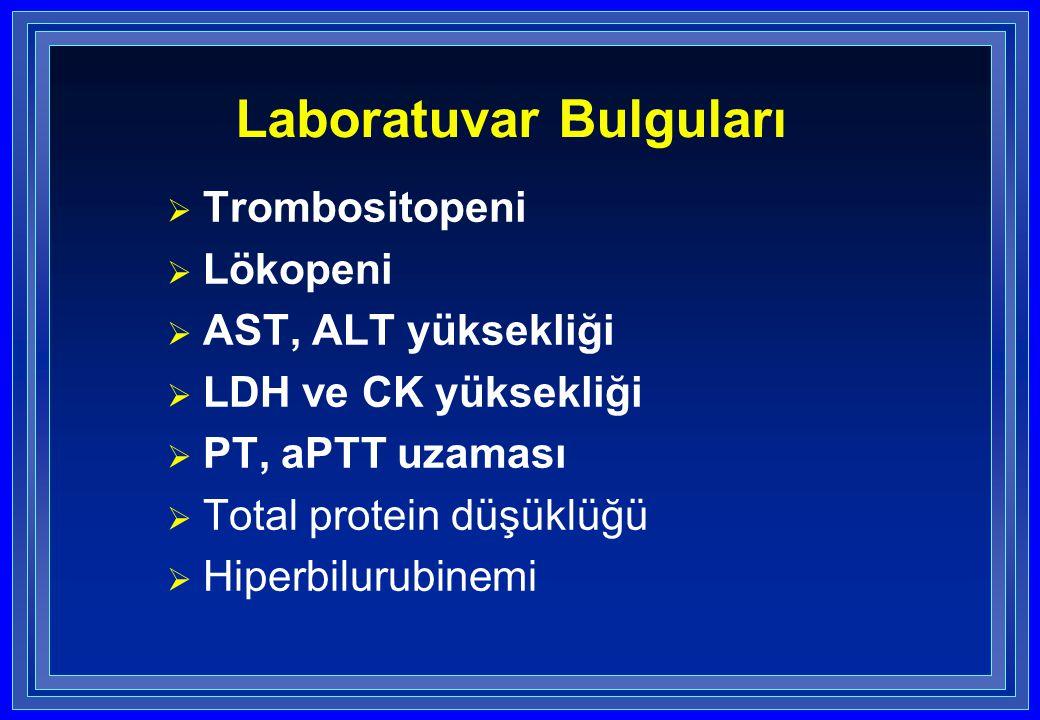  Trombositopeni  Lökopeni  AST, ALT yüksekliği  LDH ve CK yüksekliği  PT, aPTT uzaması  Total protein düşüklüğü  Hiperbilurubinemi Laboratuvar Bulguları
