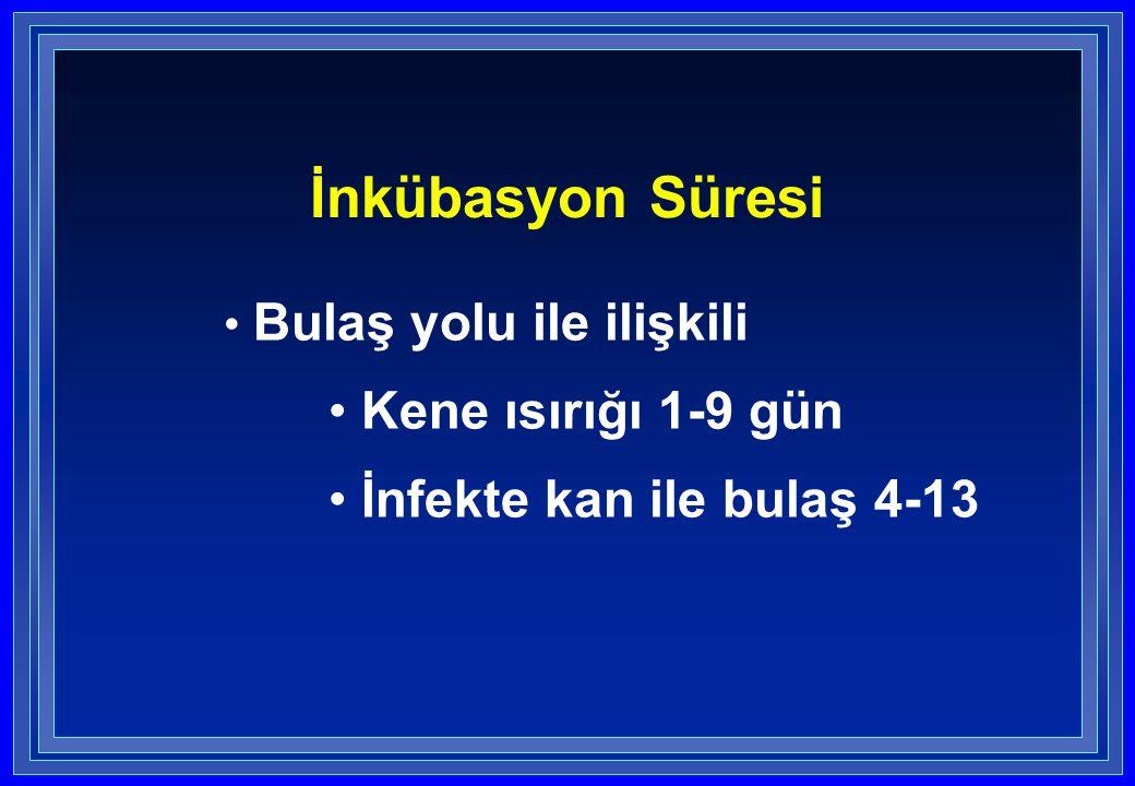 İnkübasyon Süresi Bulaş yolu ile ilişkili Kene ısırığı 1-9 gün İnfekte kan ile bulaş 4-13