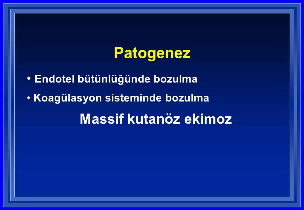 Patogenez Endotel bütünlüğünde bozulma Koagülasyon sisteminde bozulma Massif kutanöz ekimoz