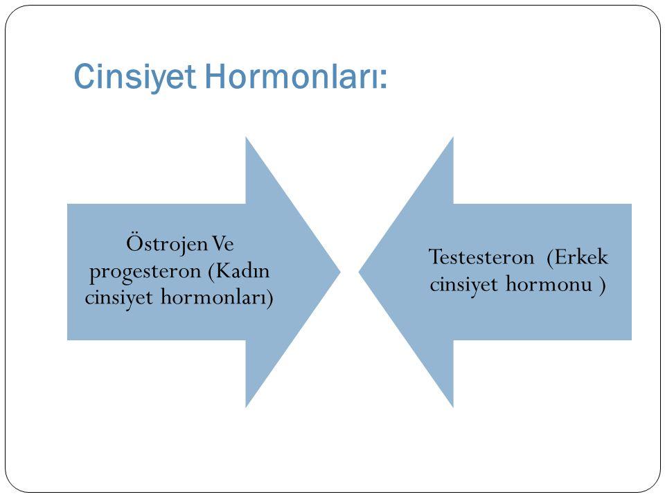 Ergenin Fiziksel Değişiminde Hormonların Rolü: Testeron hormonu erkeklerde tüylenme, ses de ğ i ş imi, cinsel organlar ve iskelet geli ş imini etkiler