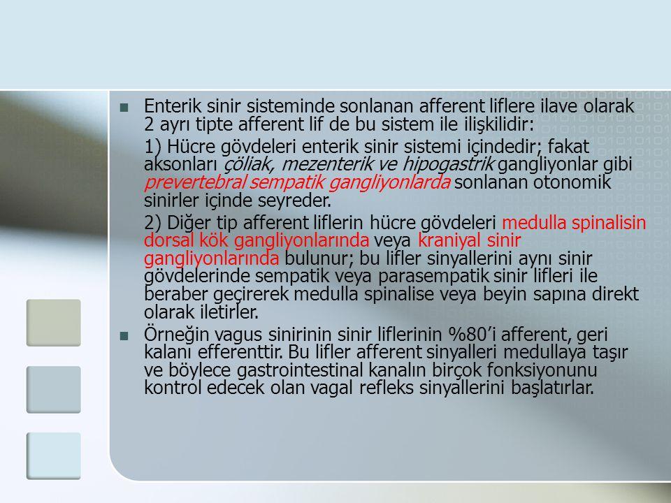 Enterik sinir sisteminde sonlanan afferent liflere ilave olarak 2 ayrı tipte afferent lif de bu sistem ile ilişkilidir: 1) Hücre gövdeleri enterik sin
