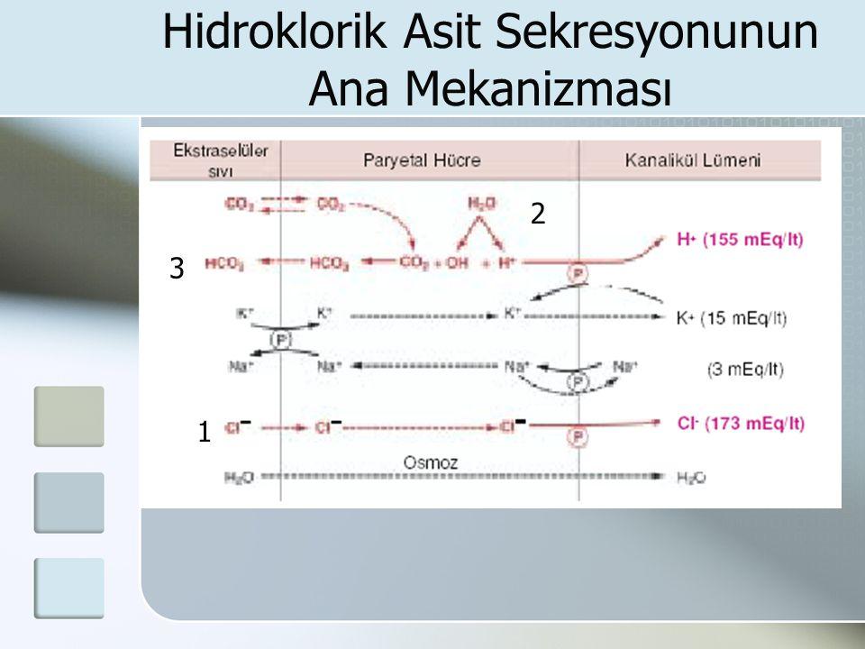Hidroklorik Asit Sekresyonunun Ana Mekanizması 1 2 3