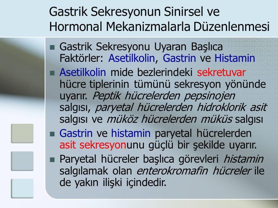 Gastrik Sekresyonun Sinirsel ve Hormonal Mekanizmalarla Düzenlenmesi Gastrik Sekresyonu Uyaran Başlıca Faktörler: Asetilkolin, Gastrin ve Histamin Ase