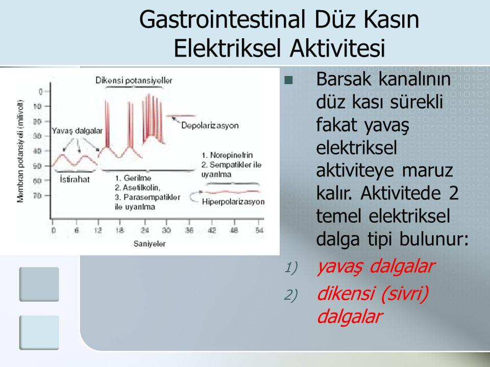 Gastrointestinal Düz Kasın Elektriksel Aktivitesi Barsak kanalının düz kası sürekli fakat yavaş elektriksel aktiviteye maruz kalır. Aktivitede 2 temel