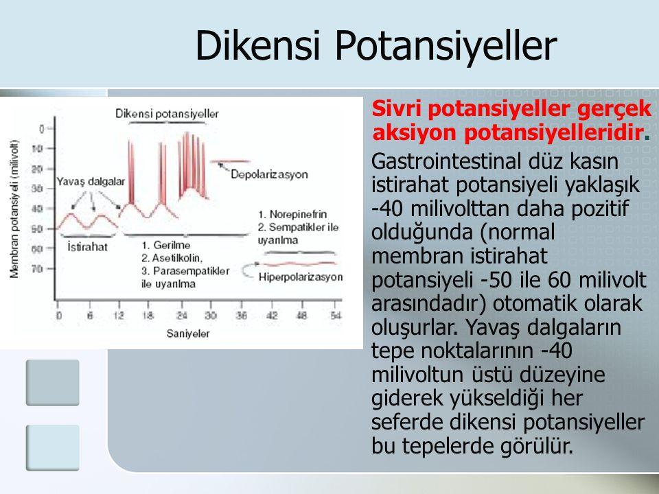 Dikensi Potansiyeller Sivri potansiyeller gerçek aksiyon potansiyelleridir. Gastrointestinal düz kasın istirahat potansiyeli yaklaşık -40 milivolttan