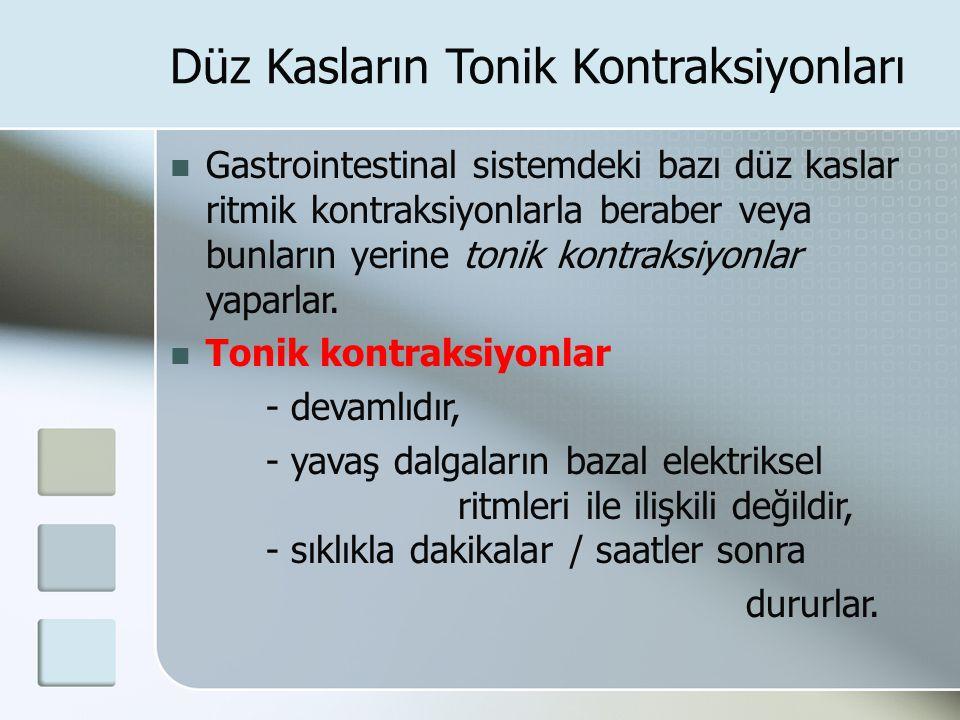 Düz Kasların Tonik Kontraksiyonları Gastrointestinal sistemdeki bazı düz kaslar ritmik kontraksiyonlarla beraber veya bunların yerine tonik kontraksiy