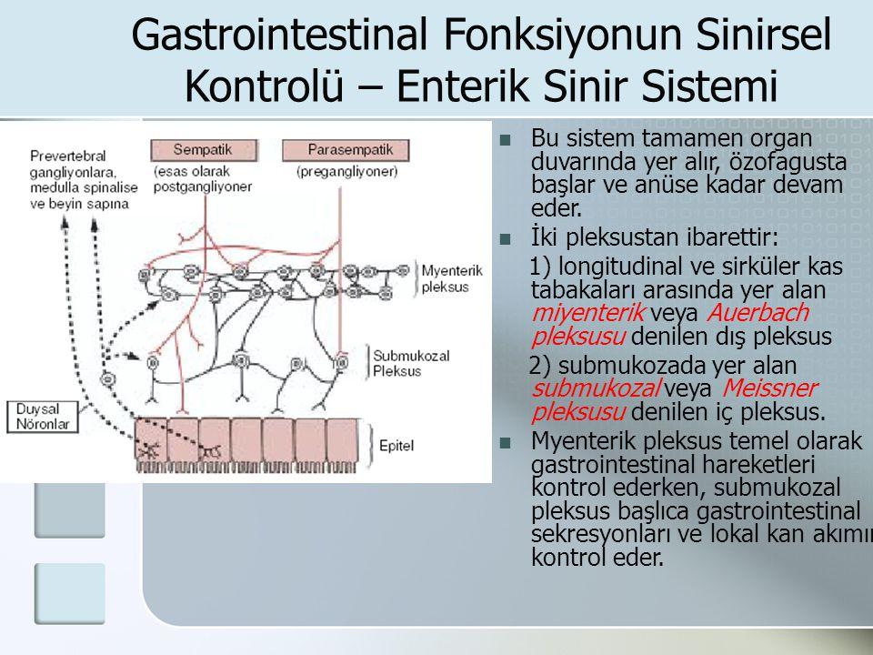 Gastrointestinal Fonksiyonun Sinirsel Kontrolü – Enterik Sinir Sistemi Bu sistem tamamen organ duvarında yer alır, özofagusta başlar ve anüse kadar de