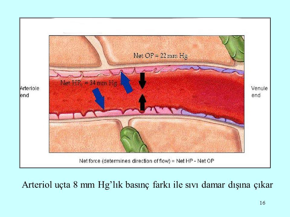 16 Arteriol uçta 8 mm Hg'lık basınç farkı ile sıvı damar dışına çıkar