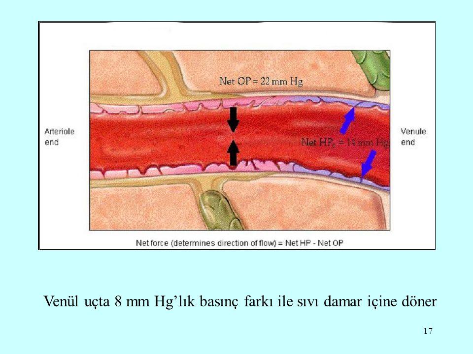 17 Venül uçta 8 mm Hg'lık basınç farkı ile sıvı damar içine döner