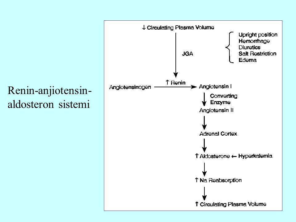 28 Renin-anjiotensin- aldosteron sistemi