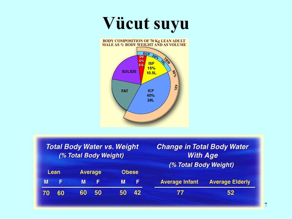 7 Vücut suyu