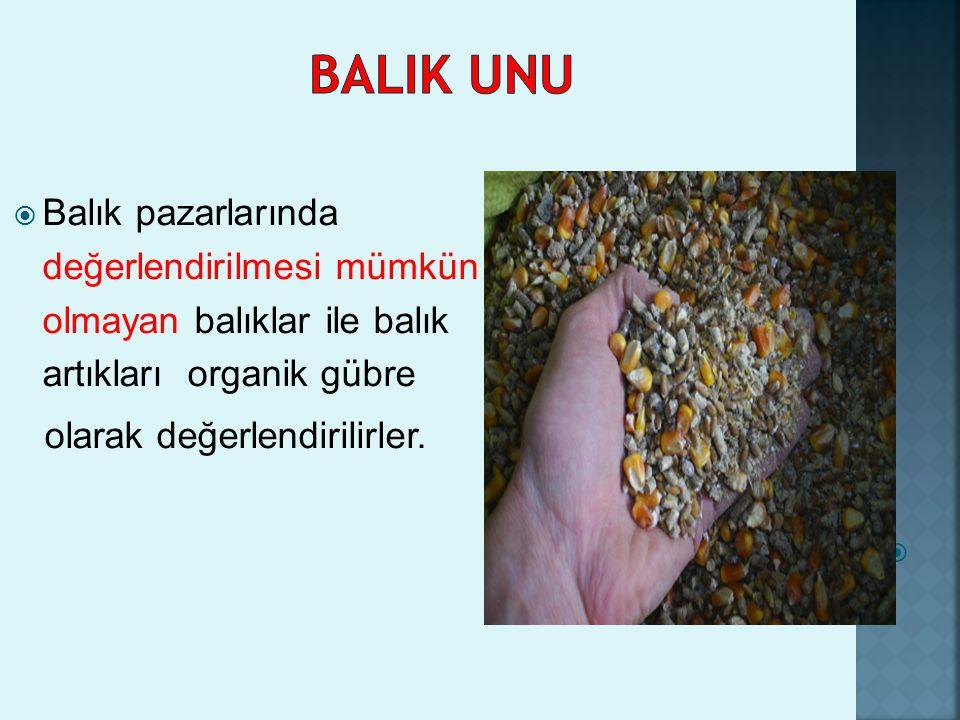  Balık pazarlarında değerlendirilmesi mümkün olmayan balıklar ile balık artıkları organik gübre olarak değerlendirilirler. 