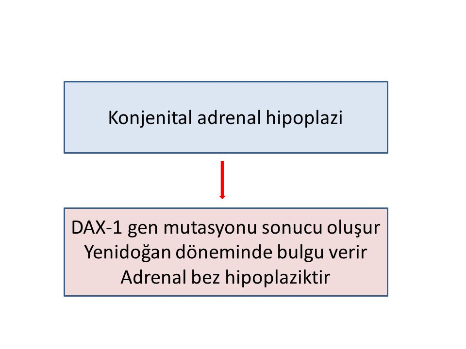 Konjenital adrenal hipoplazi DAX-1 gen mutasyonu sonucu oluşur Yenidoğan döneminde bulgu verir Adrenal bez hipoplaziktir