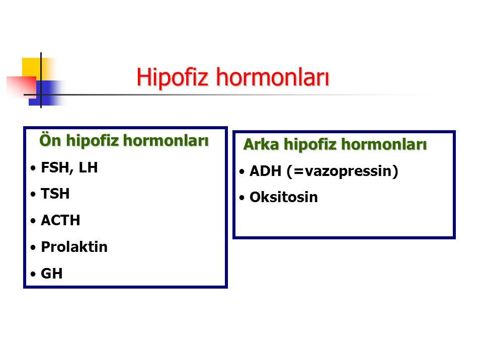 Ön hipofiz hormonları Ön hipofiz hormonları FSH, LH TSH ACTH Prolaktin GH Arka hipofiz hormonları ADH (=vazopressin) Oksitosin Hipofiz hormonları