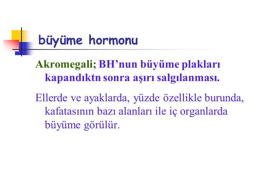 büyüme hormonu Akromegali; BH'nun büyüme plakları kapandıktn sonra aşırı salgılanması. Ellerde ve ayaklarda, yüzde özellikle burunda, kafatasının bazı