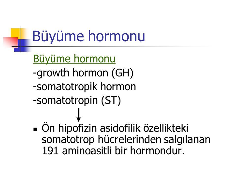 Büyüme hormonu -growth hormon (GH) -somatotropik hormon -somatotropin (ST) Ön hipofizin asidofilik özellikteki somatotrop hücrelerinden salgılanan 191