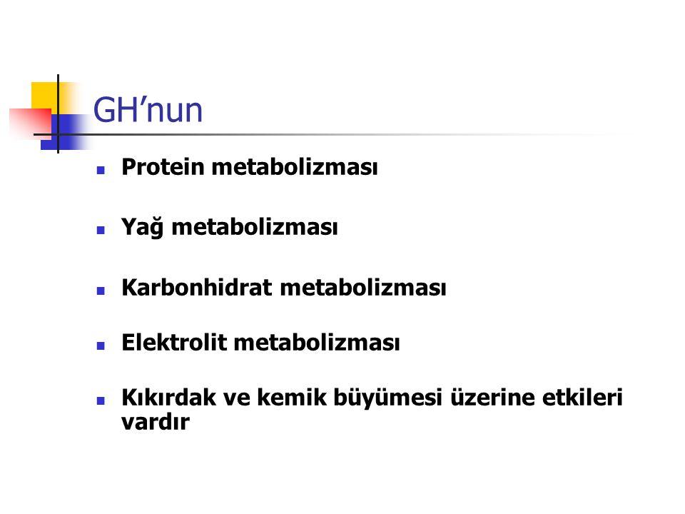 GH'nun Protein metabolizması Yağ metabolizması Karbonhidrat metabolizması Elektrolit metabolizması Kıkırdak ve kemik büyümesi üzerine etkileri vardır