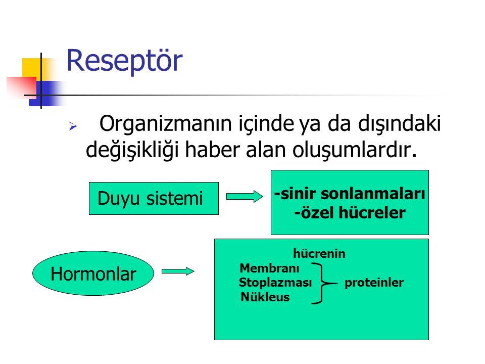 Reseptör  Organizmanın içinde ya da dışındaki değişikliği haber alan oluşumlardır. Duyu sistemi -sinir sonlanmaları -özel hücreler Hormonlar hücrenin