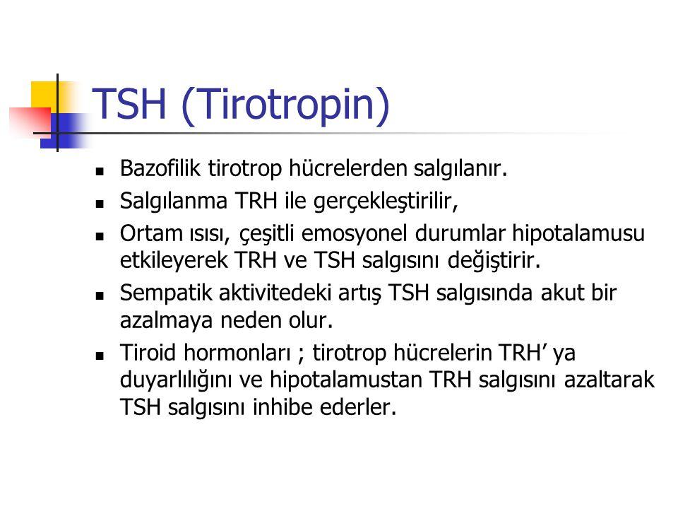 TSH (Tirotropin) Bazofilik tirotrop hücrelerden salgılanır. Salgılanma TRH ile gerçekleştirilir, Ortam ısısı, çeşitli emosyonel durumlar hipotalamusu