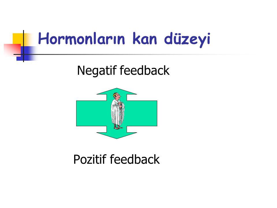 Hormonların kan düzeyi Negatif feedback Pozitif feedback