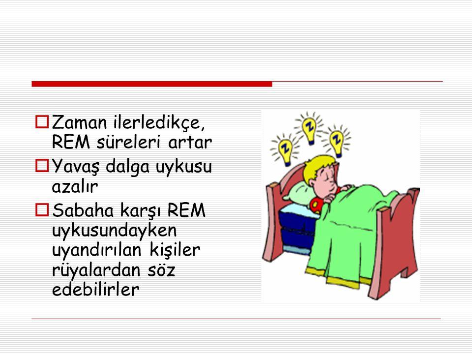  Zaman ilerledikçe, REM süreleri artar  Yavaş dalga uykusu azalır  Sabaha karşı REM uykusundayken uyandırılan kişiler rüyalardan söz edebilirler