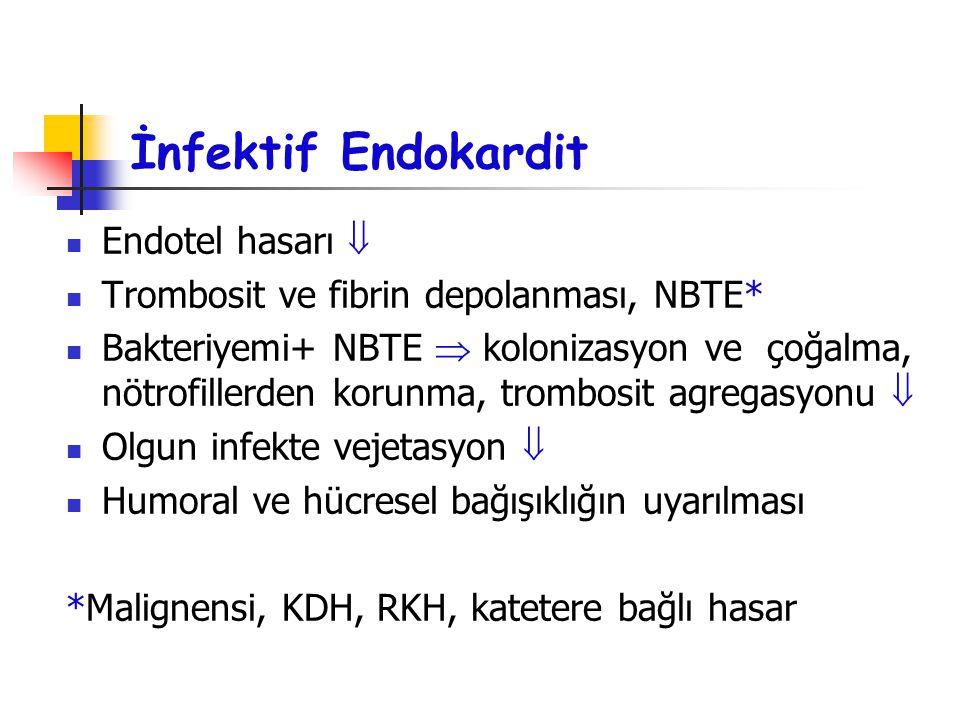 İnfektif Endokardit Endotel hasarı  Trombosit ve fibrin depolanması, NBTE* Bakteriyemi+ NBTE  kolonizasyon ve çoğalma, nötrofillerden korunma, tromb