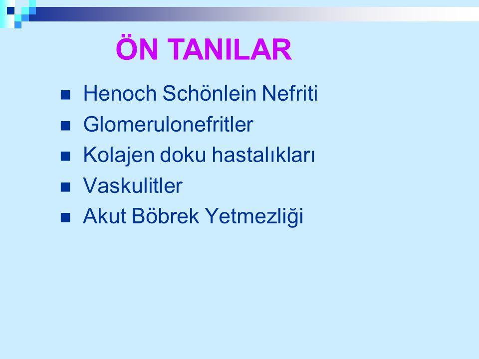 Henoch Schönlein Nefriti Glomerulonefritler Kolajen doku hastalıkları Vaskulitler Akut Böbrek Yetmezliği ÖN TANILAR