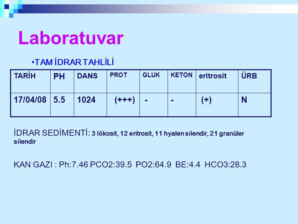 Laboratuvar TARİH PH DANS PROTGLUKKETON eritrositÜRB 17/04/085.51024 (+++) -- (+)N TAM İDRAR TAHLİLİ İDRAR SEDİMENTİ: 3 lökosit, 12 eritrosit, 11 hyal