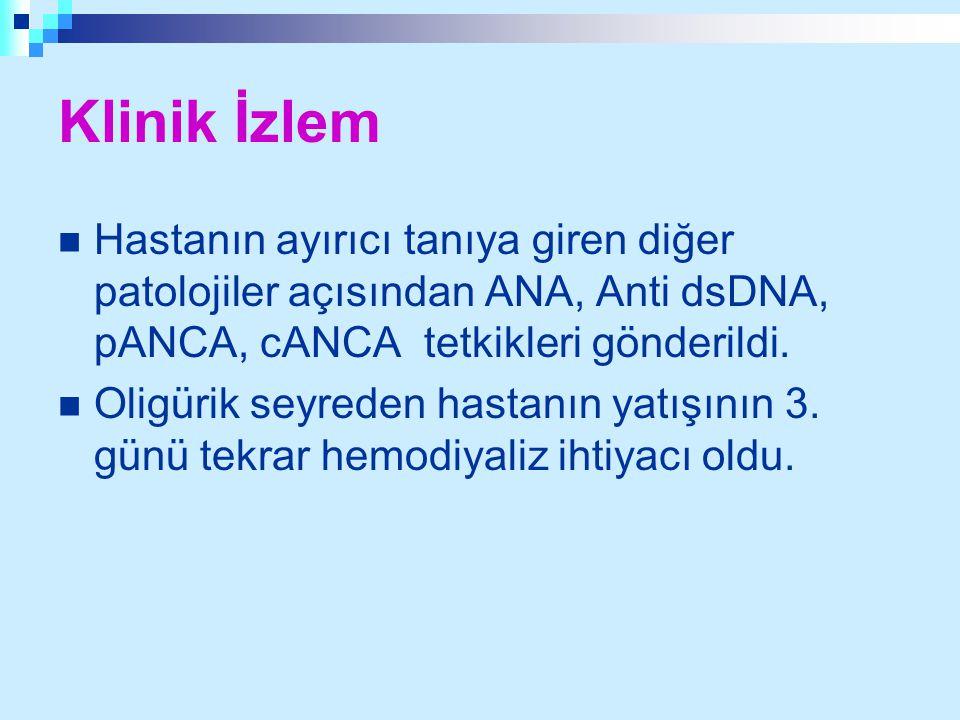 Klinik İzlem Hastanın ayırıcı tanıya giren diğer patolojiler açısından ANA, Anti dsDNA, pANCA, cANCA tetkikleri gönderildi. Oligürik seyreden hastanın