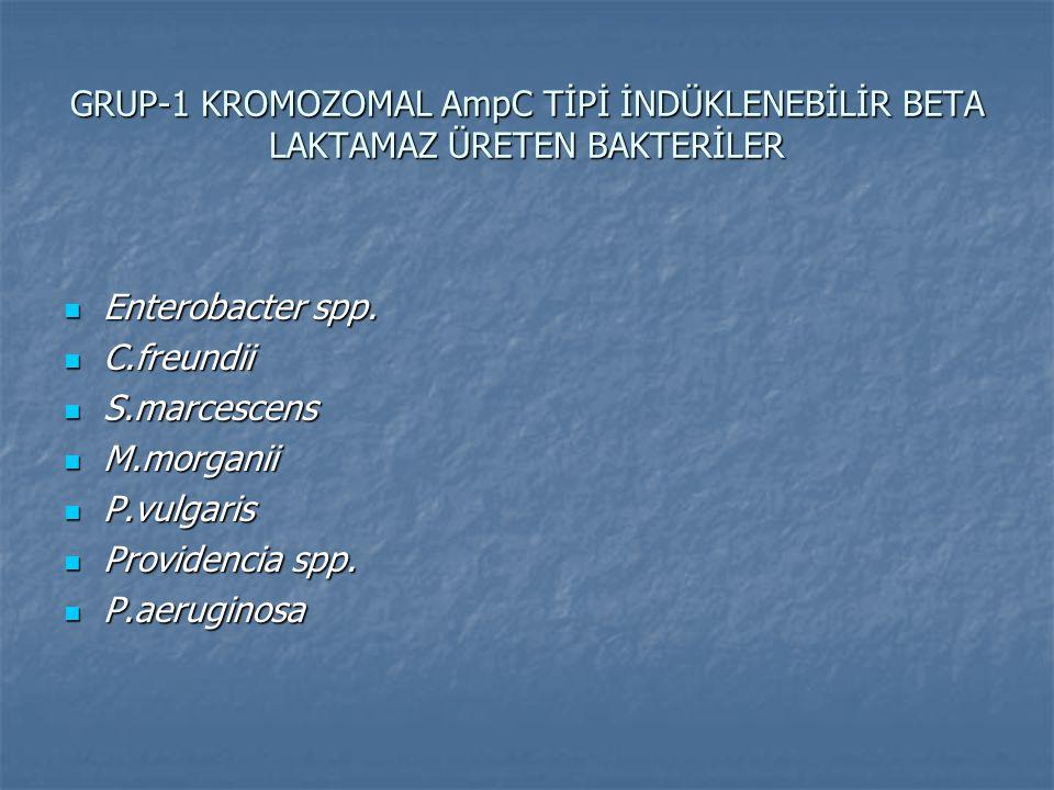 GRUP-1 KROMOZOMAL AmpC TİPİ İNDÜKLENEBİLİR BETA LAKTAMAZ ÜRETEN BAKTERİLER Enterobacter spp. Enterobacter spp. C.freundii C.freundii S.marcescens S.ma