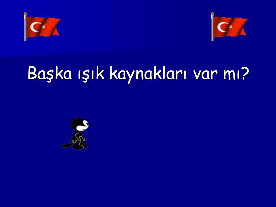MUM FENER IŞILDAK