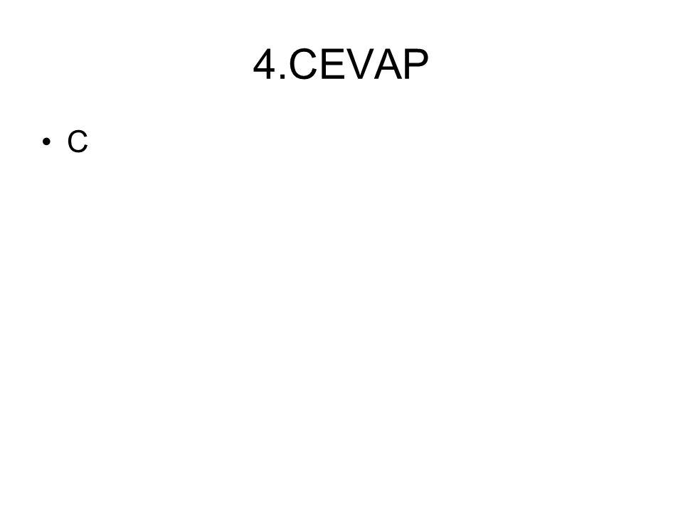4.CEVAP C