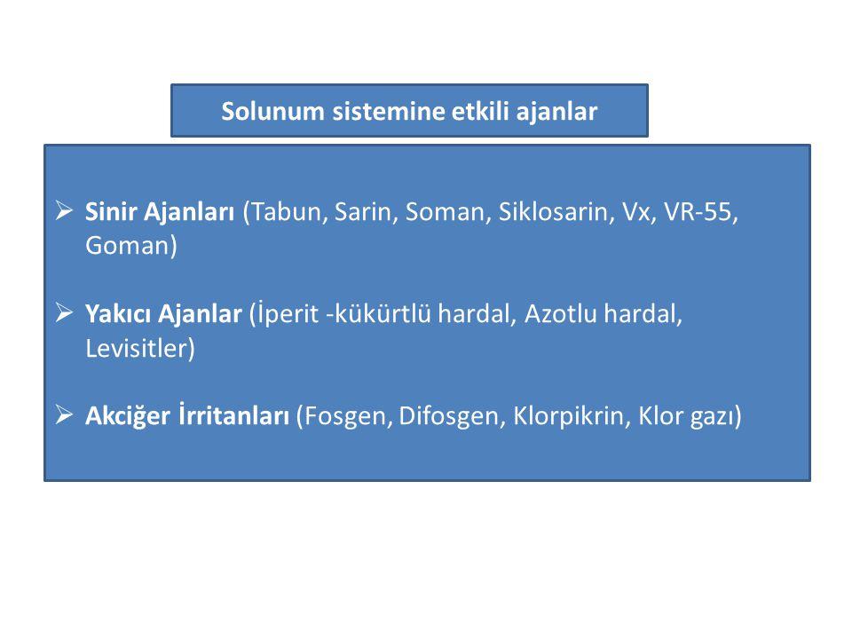  Sinir Ajanları (Tabun, Sarin, Soman, Siklosarin, Vx, VR-55, Goman)  Yakıcı Ajanlar (İperit -kükürtlü hardal, Azotlu hardal, Levisitler)  Akciğer İ