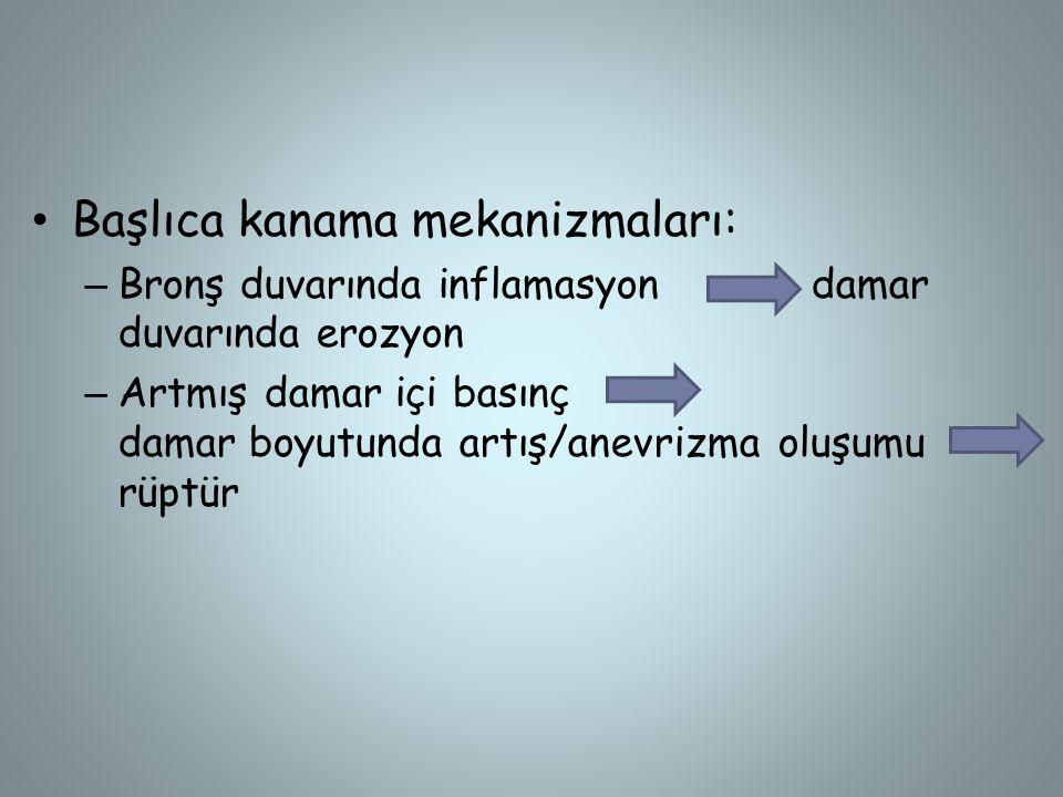 -Nadir nedenler - Amiloidoz - Katamenial(menorajik) hemoptizi -Skorbüt(C vit eksikliği) -Lenfanjioleiomiyomatoz -Pulmoner hemosideroz -Bronşiyal telenjiektazi (Osler Weber Rendu) -Henoch-Schönlein purpurası -Antifosfolipid antikor sendromu -Serratia marcescens pnömonisi (pseudohemoptizi) -Pnömokonyoz -Dielafoy hast (anormal yüzeyel damar)