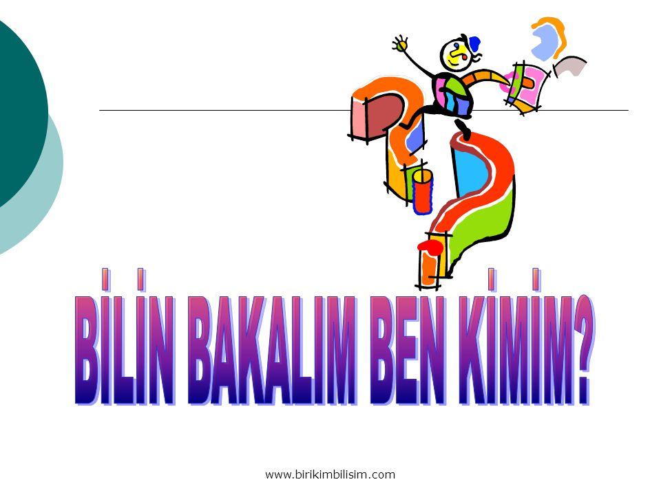 www.birikimbilisim.com