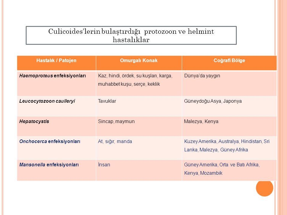 Hastalık / PatojenOmurgalı KonakCoğrafi Bölge Haemoproteus enfeksiyonları Kaz, hindi, ördek, su kuşları, karga, muhabbet kuşu, serçe, keklik Dünya'da