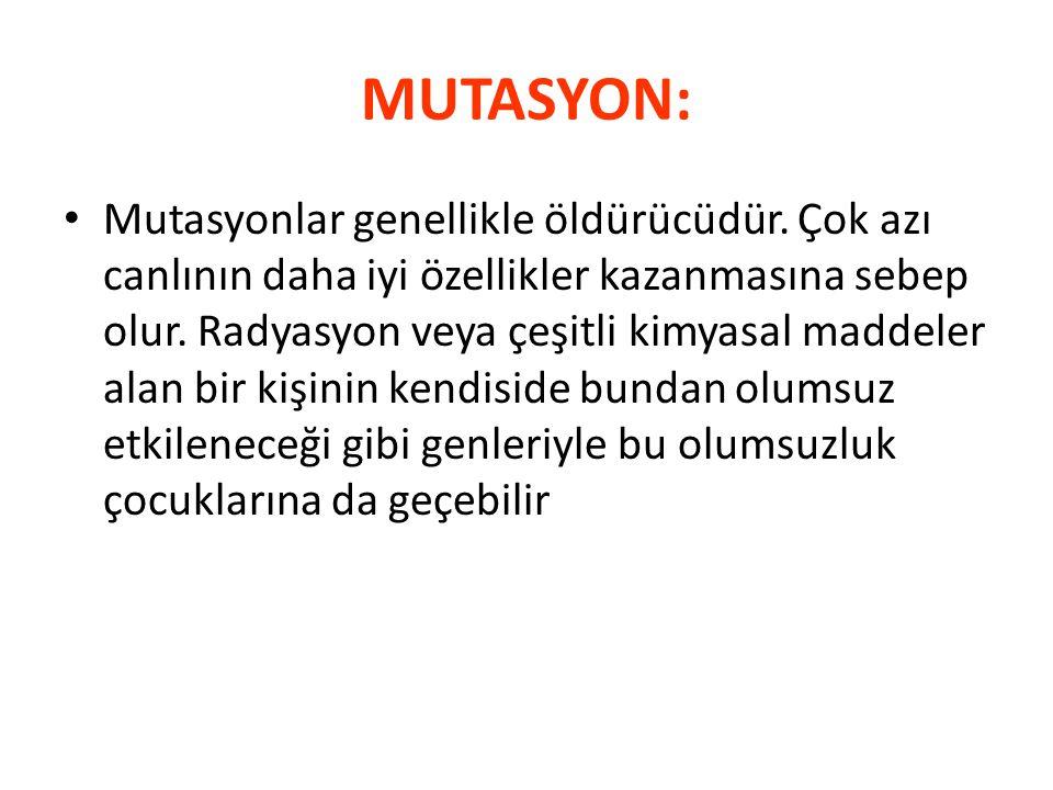 MUTASYON: Mutasyonlar genellikle öldürücüdür. Çok azı canlının daha iyi özellikler kazanmasına sebep olur. Radyasyon veya çeşitli kimyasal maddeler al