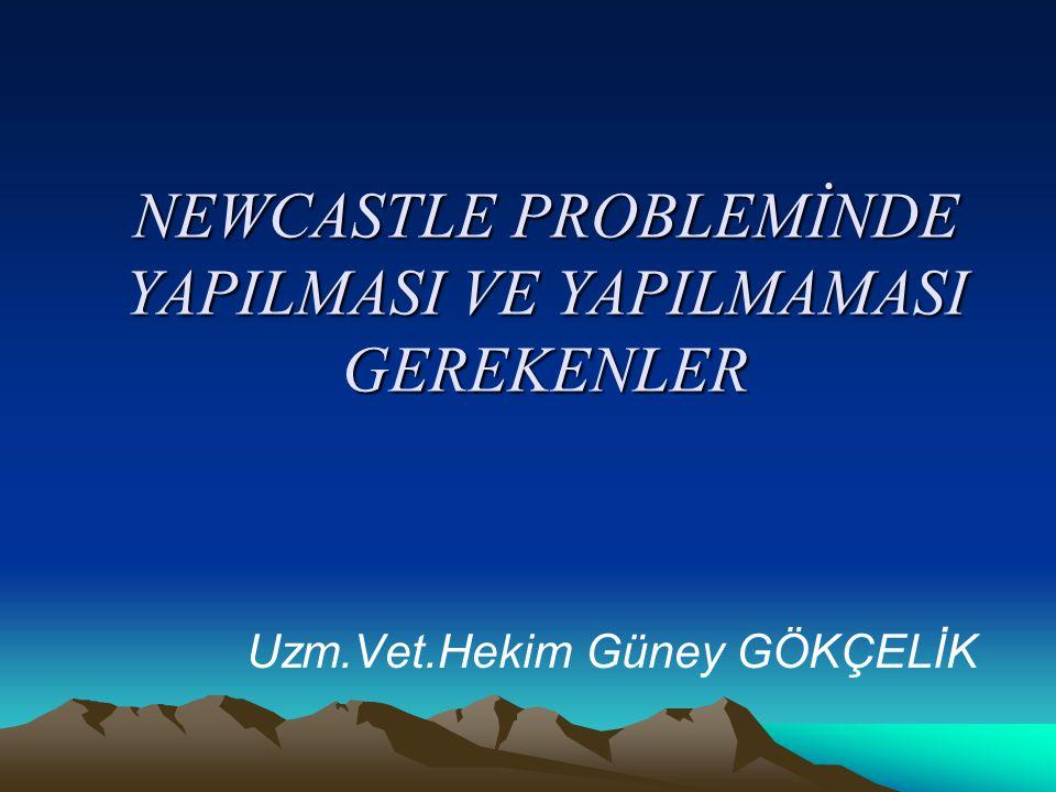 NEWCASTLE PARAMYXOVİRUS GENOTİP / 1--->9