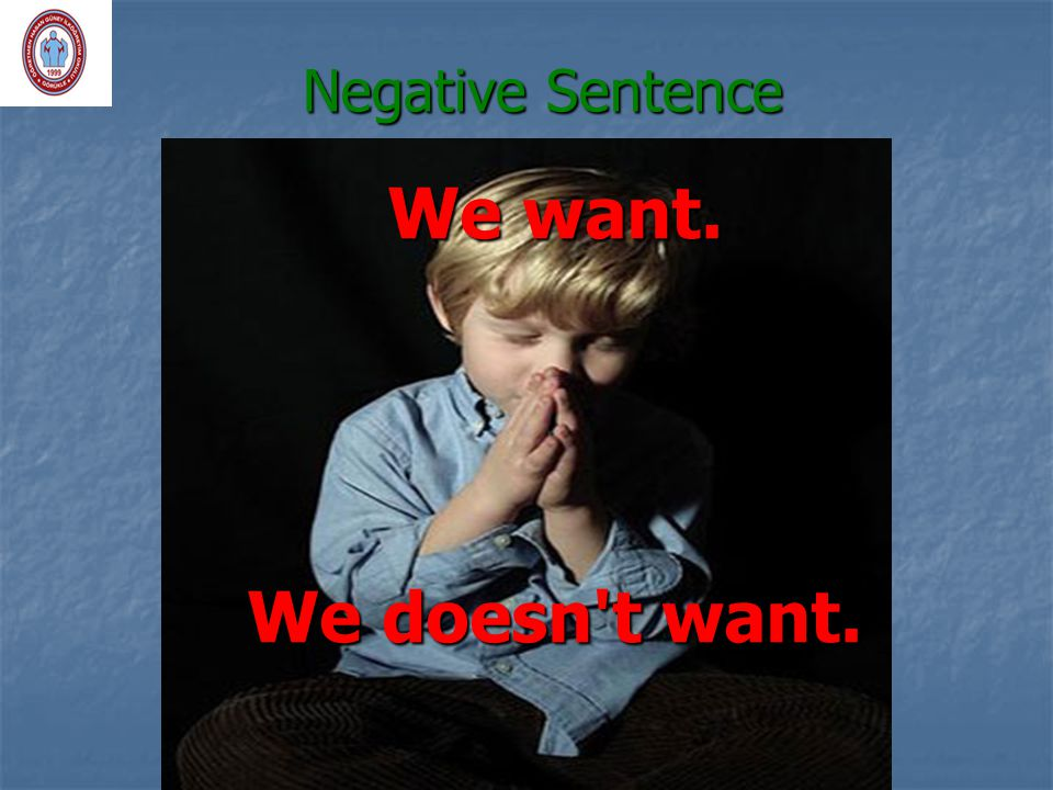 Negative Sentence We want. We doesn't want.