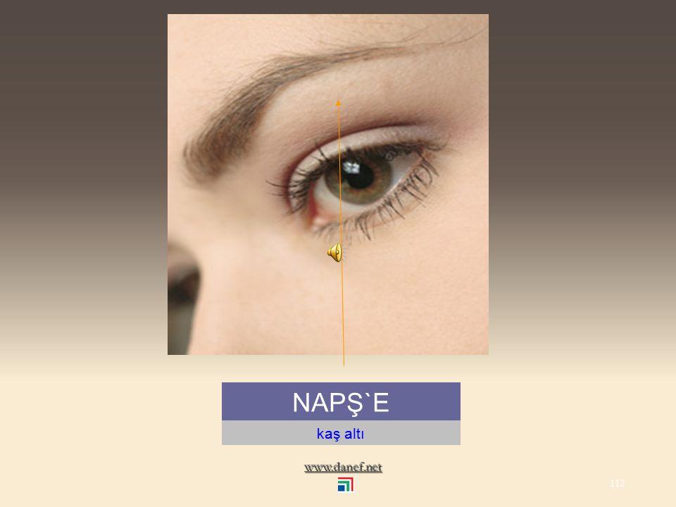 www.danef.net NAPŚE kaş...eye brow 111