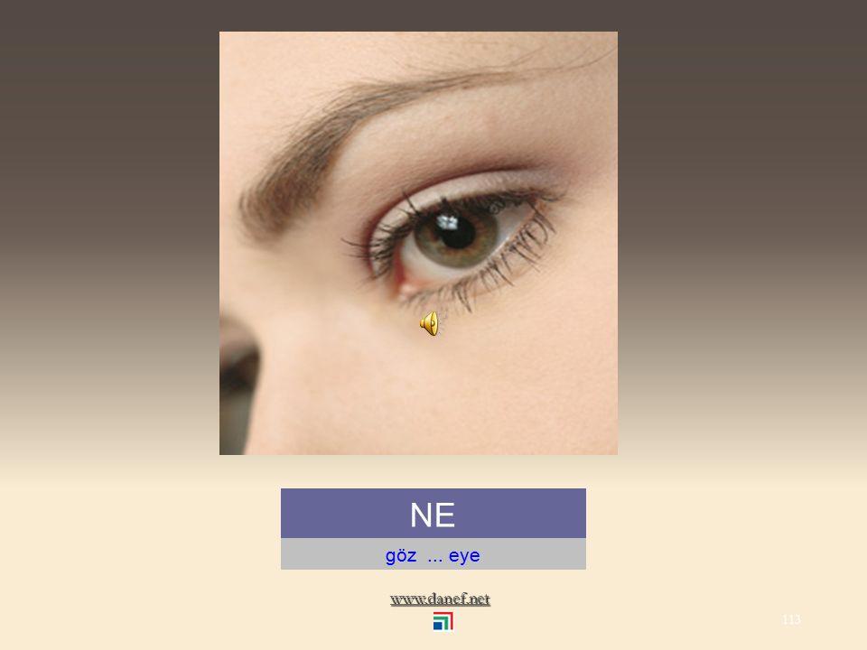 www.danef.net NAPŞ`E kaş altı 112