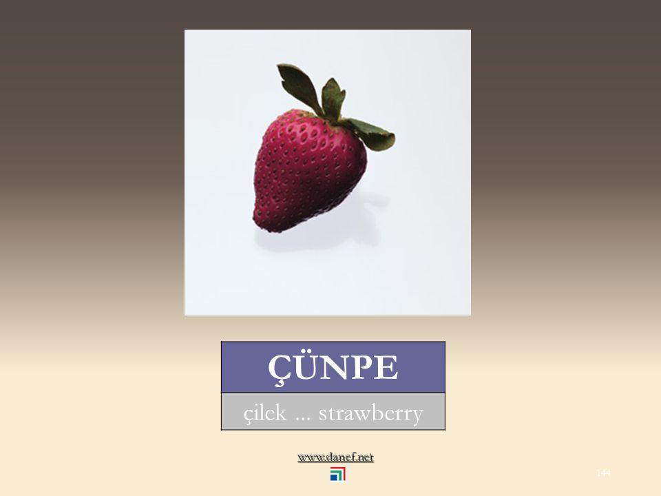 www.danef.net AYWE ayva... quince 143
